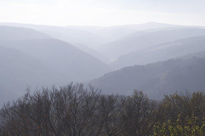 Hier sollte ein Foto erscheinen – Blick vom Steinerberghaus