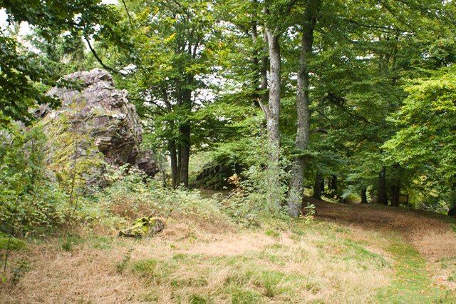 An dieser Stellen steht ein Bild mit dem Titel: Die Phantasie schwärmt, der Verstand wehrt sich: Hexentanzplatz (rechts) auf dem Wildenburger Kopf (Foto: H.-J. Schneider)