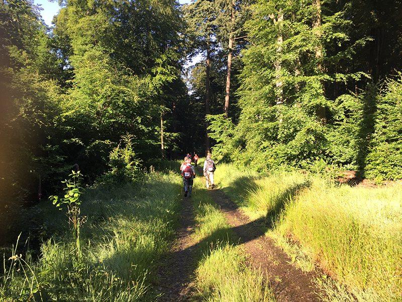 Entspanntes Wandern in friedvoller Umgebung, so war meine Vorstellung (Foto: Hans-Joachim Schneider)