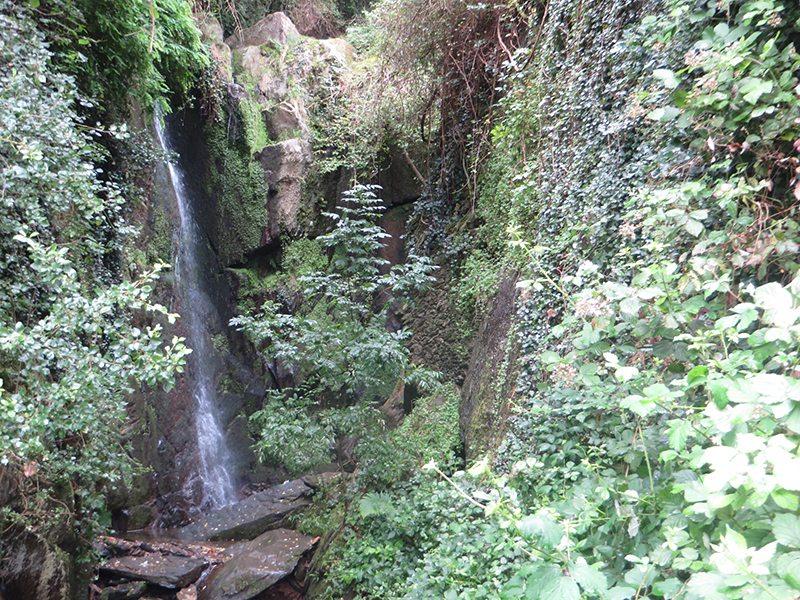 Hier steht ein Bild mit dem Titel: Eine Überraschung gleich am Anfang. Noch im Anstieg rauscht der kleine Wasserfall direkt am Weg (Foto: Hans-Joachim Schneider)