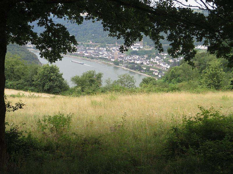 Hier steht ein Bild mit dem Titel: Immer wieder tun sich auch unterwegs kleine spektaktuläre Blicke auf das Rheintal auf (Foto: Hans-Joachim Schneider)
