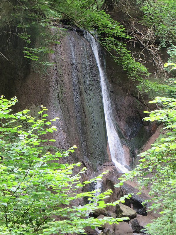 Hier steht ein Bild mit dem Titel: Spektakulärer Schluss der Wolfsschluch: ein Wasserfall (Foto: Hans-Joachim Schneider)