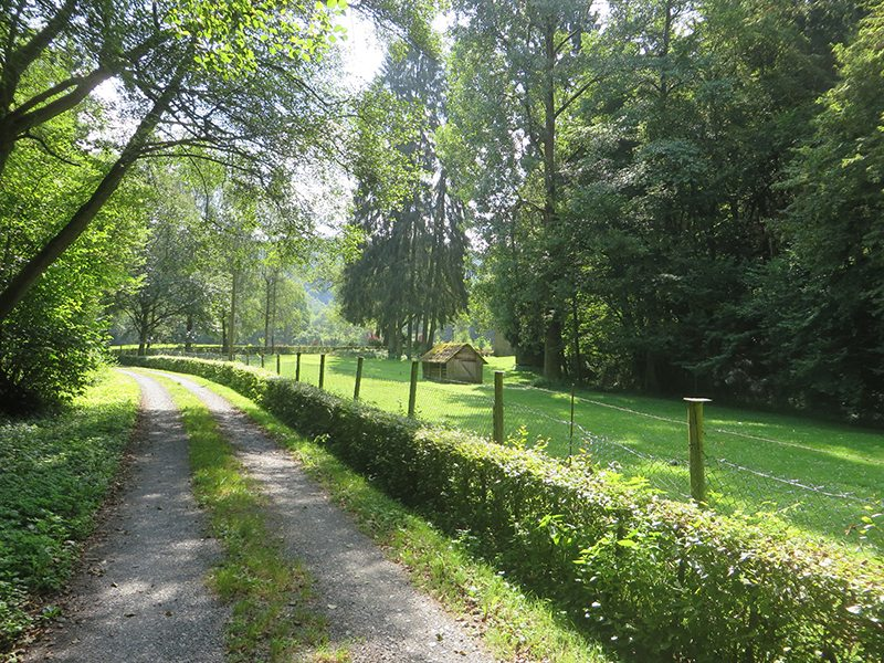 Hier steht ein Bild mit dem Titel: Grüne Idylle an der Franzismühle im Baybachtal (Foto: Hans-Joachim Schneider)