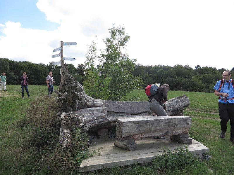 Hier steht ein Bild mit dem Titel: Kunst-Stück: Mit vier Kettensägenschnitten wurde aus einem Birnbaumstamm eine Bank mit Tisch (Foto: Hans-Joachim Schneider)