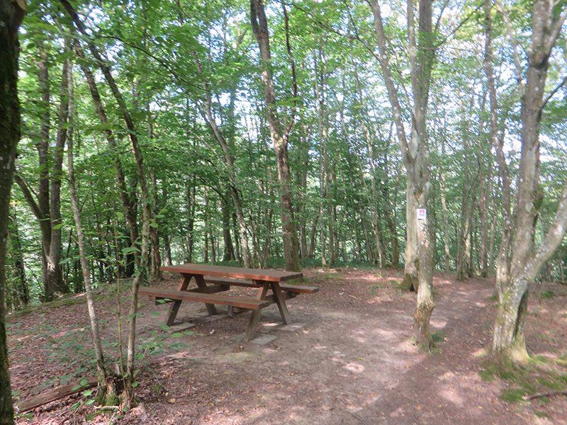 Hier steht ein Bild mit dem Titel: Eine Sitzgruppe an einem verzauberten Platz, der ehemalige Löns-Naturschutzpark im Hunsrück (Foto: Hans-Joachim Schneider)