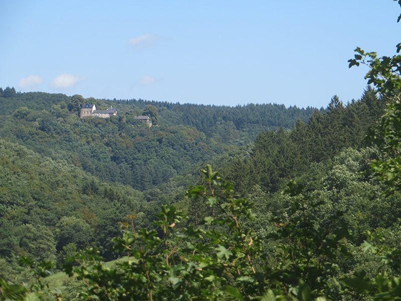 Hier steht ein Bild mit dem Titel: Kurz vor dem Abstieg zur Ehrbachklamm öffnet sich der Blick auf Schloss Schöneck (Foto: Hans-Joachim Schneider)