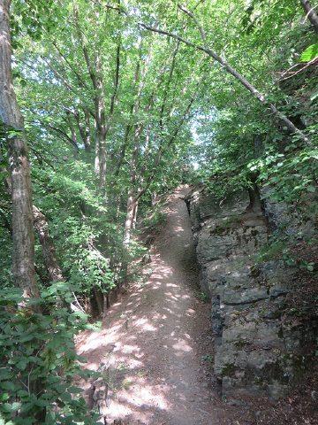 Hier steht ein Bild mit dem Text: Auf schmalem mit Steinen und Wurzeln durchsetztem Pfad erfolgt der Aufstieg Richtung Teufelsloch (Foto: Hans-Joachim Schneider)