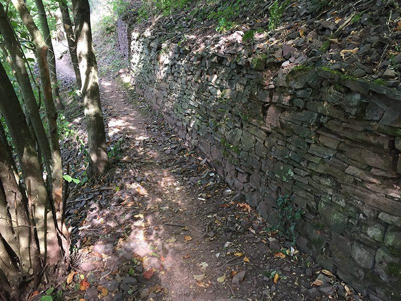 Auf der Moselsteig-Etappe 18 von Beilstein nach Cochem