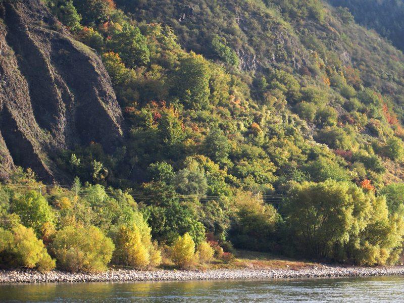 Oktobermorgen: Das frühe Herbstlicht wärmt die Farben (Foto: Hans-Joachim Schneider)