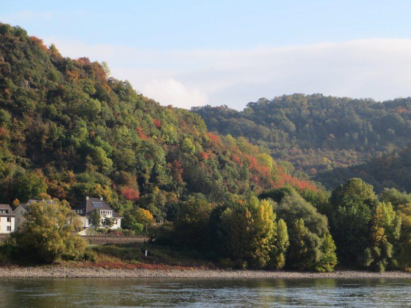 Das Rheinufer zwischen Erpel und Linz ist dünn besiedelt, die Häuser verstecken sich im herbstlichen Bunt (Foto: Hans-Joachim Schneider)
