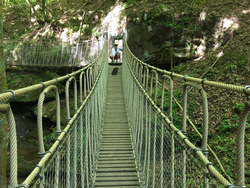 Über mehrere Hängebrücken und Treppen führt der Römerpfad durch das Butzerbachtal und wechselt dabei immer mal die Bachseite. Für die Dackeldame Jette jedesmal eine Möglichkeit, ihren Mut zu bewesisen.