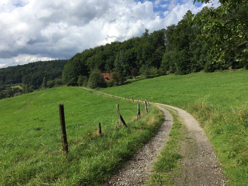 Weg, Wiesen, Wolken, das letzte Wegstück kurz vor Ober-Hambach