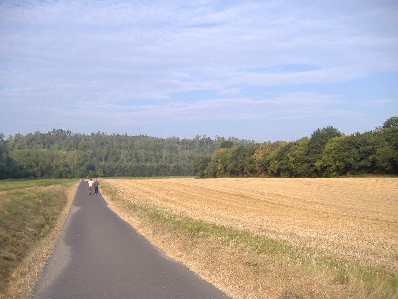 Sonne, HImmel, Acker, Feld, Weg, Wald