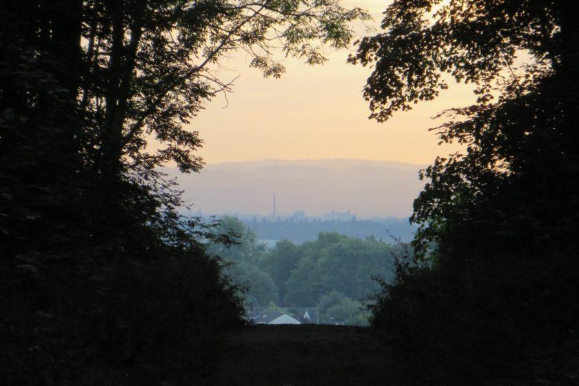 Beim Abstieg von der Glessener Höhe öffnet sich der Blick am Waldrand nach Brauweiler