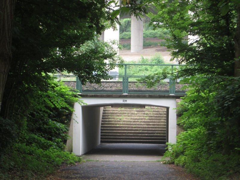 Weg, Wald, Straße, Rheinburgenweg, B0