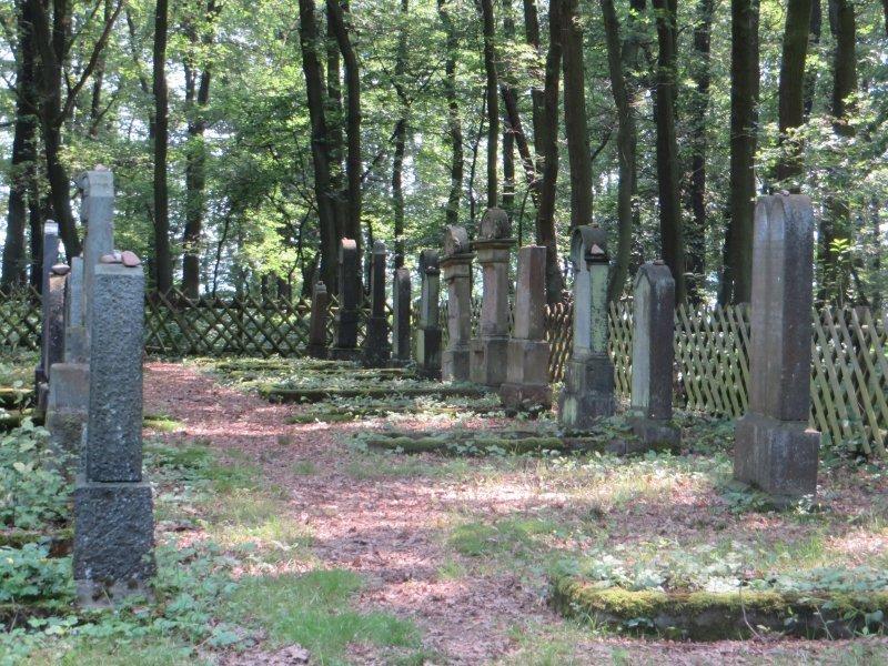 Friedhof, Wald, Waldfriedhof, Grabsteine, hebräisch, Steinkreuze am Rheinburgenweg