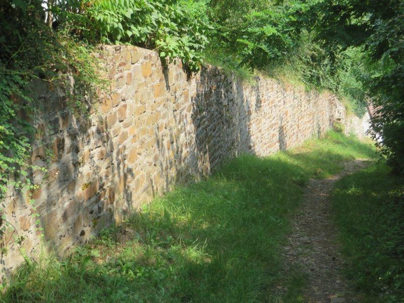 Weg, Grün, Schatten, Mauer, Steinmauer