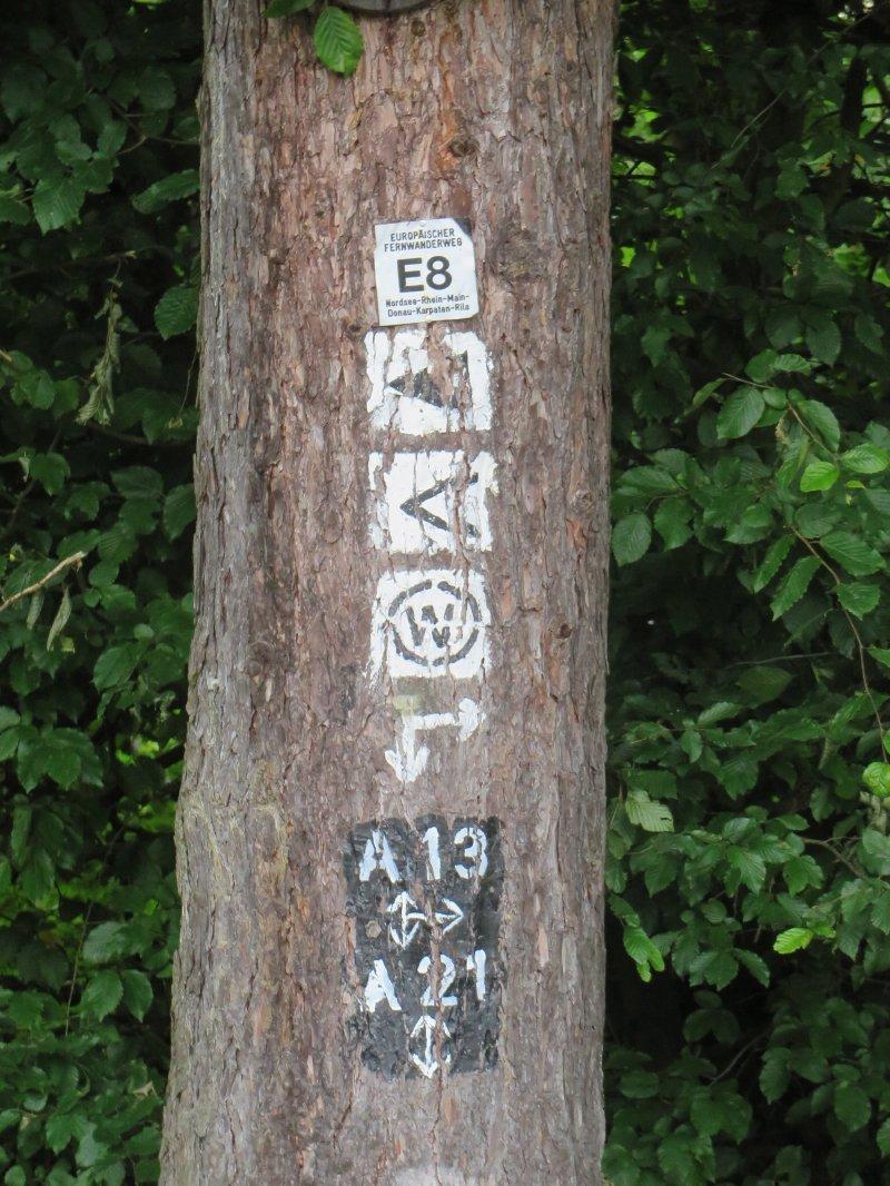 Baum, Wald, Wegezeichen, Markierungen am BAum